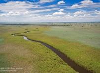 Grant-Atkinson_Ngogha-Okavango_IMG_5858odp
