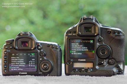 Canon 5Dmk3 and Canon 1Dmk4