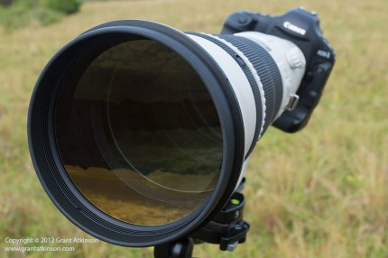 Canon EF 600 f4 L IS ii and Canon 1Dmk4