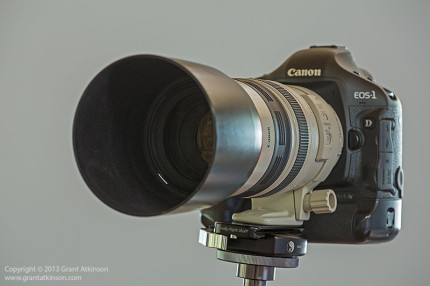 Canon EF 100-400L f4.5-5.6 IS USM lens mounted on Canon 1Dmk4. Click for larger view