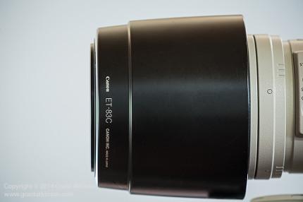 Lens hood ET 83C in reversed position on the EF 100-400L
