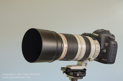 Canon EF 100-400L f4-5.6 IS ii USM, mounted on a Canon 5Dmk3. Click for larger view