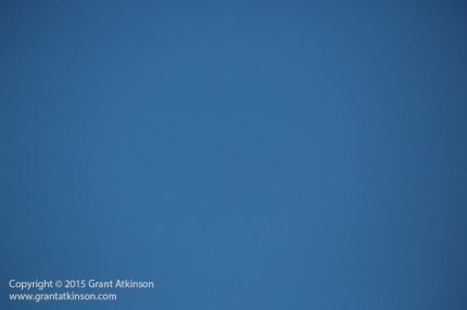 Grant-Atkinson-Cape-Town_RA_0309_0018-2