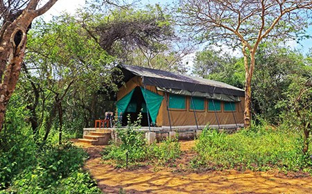 wilpattu_safari_camp