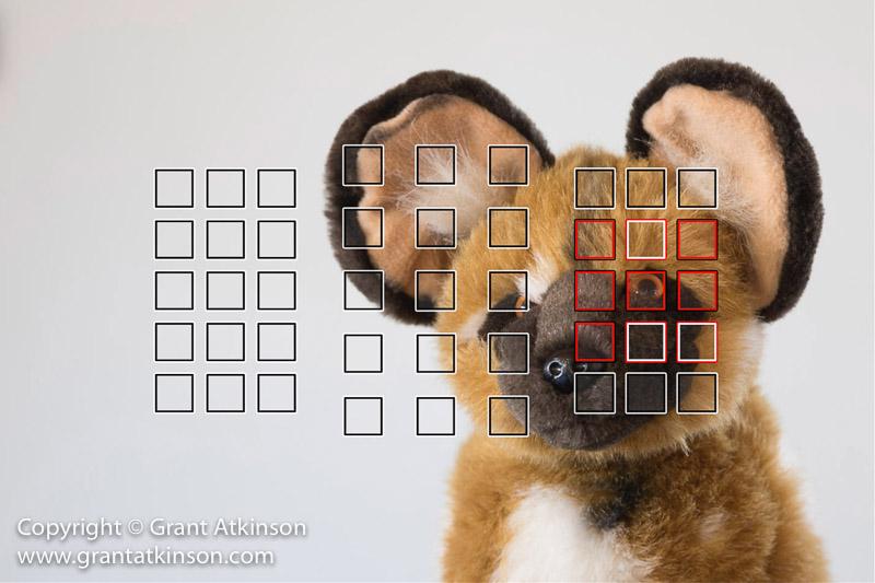 grant-atkinson-6