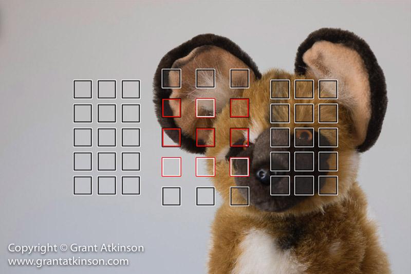grant-atkinson-7