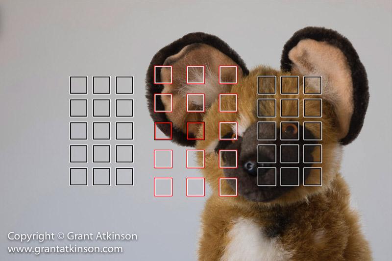 grant-atkinson-8