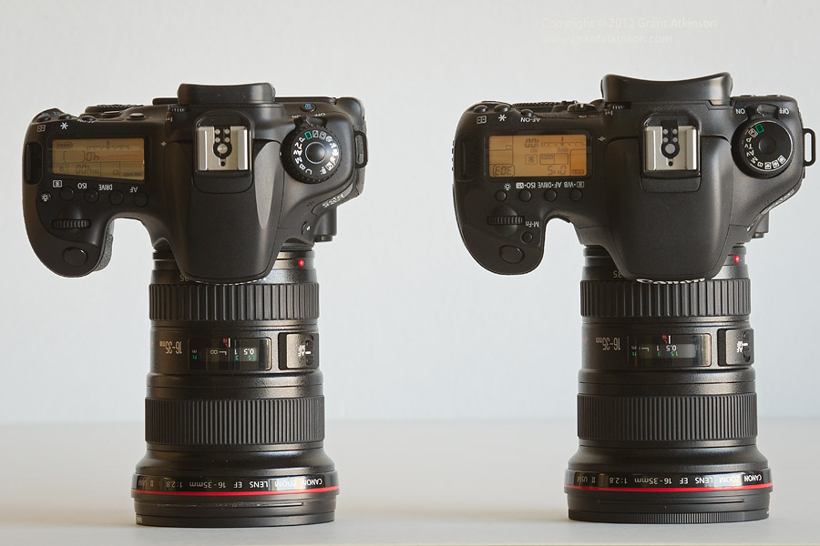 canon eos 60d compared to the canon eos 7d