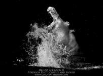 HelenaAtkinson_Botswana-4355-Edit