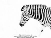 HelenaAtkinson_Botswana-9384-Edit