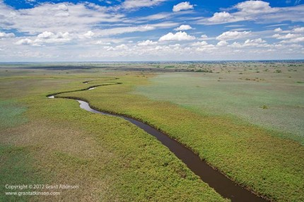 Okavango Delta from above.  Canon 350D, Canon 17-85mm lens.  Shutter speed 1/800sec at f/5.0, Iso 400.
