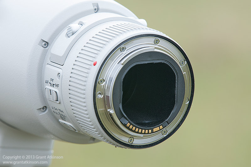 Canon EF 600 f4 L IS ii lens mount.