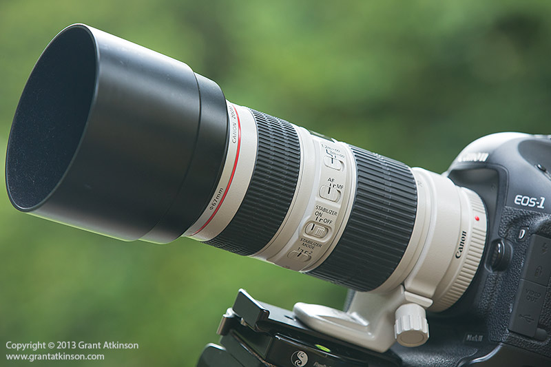 Canon EF 70-200 f4 L IS. Click for larger view
