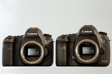 Canon's EOS 6D and 5Dmk3 side by side