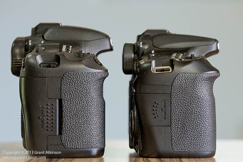Canon 7D left and Canon 70D right. Click for larger view
