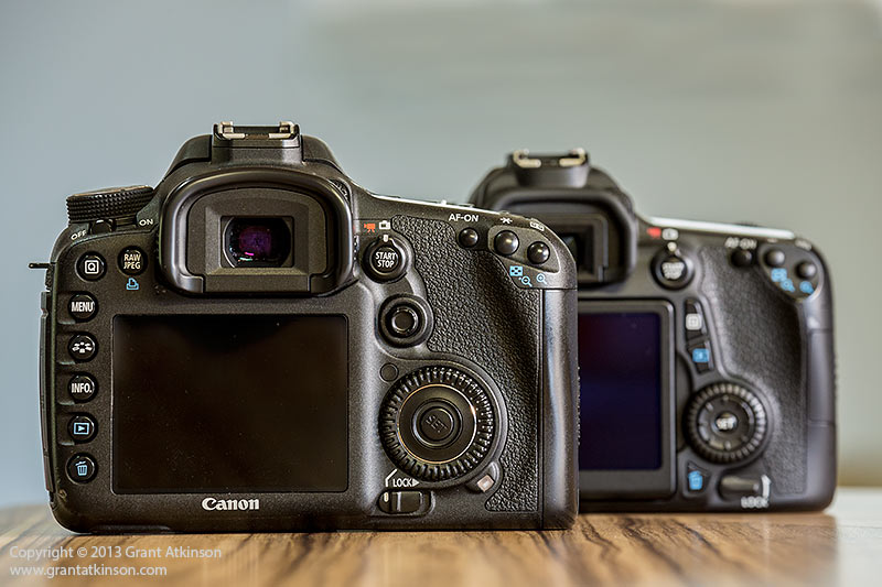 Canon EOS 7D in foreground, EOS70D behind. Click for larger view