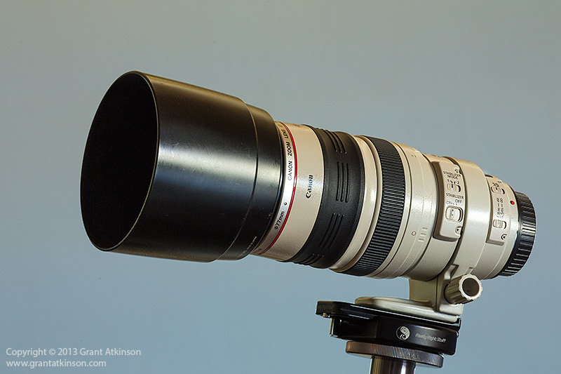 Canon EF 100-400 L f4 5-5 6 IS USM Field Review