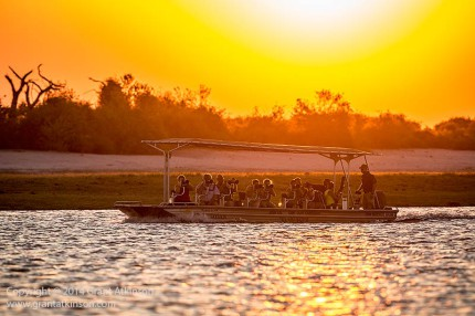 Custom-built photographic boat belonging to Pangolin Photo Safaris