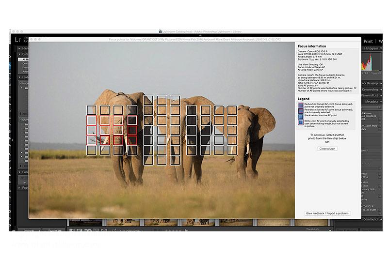 GrantAtkinson-Amboseli-4