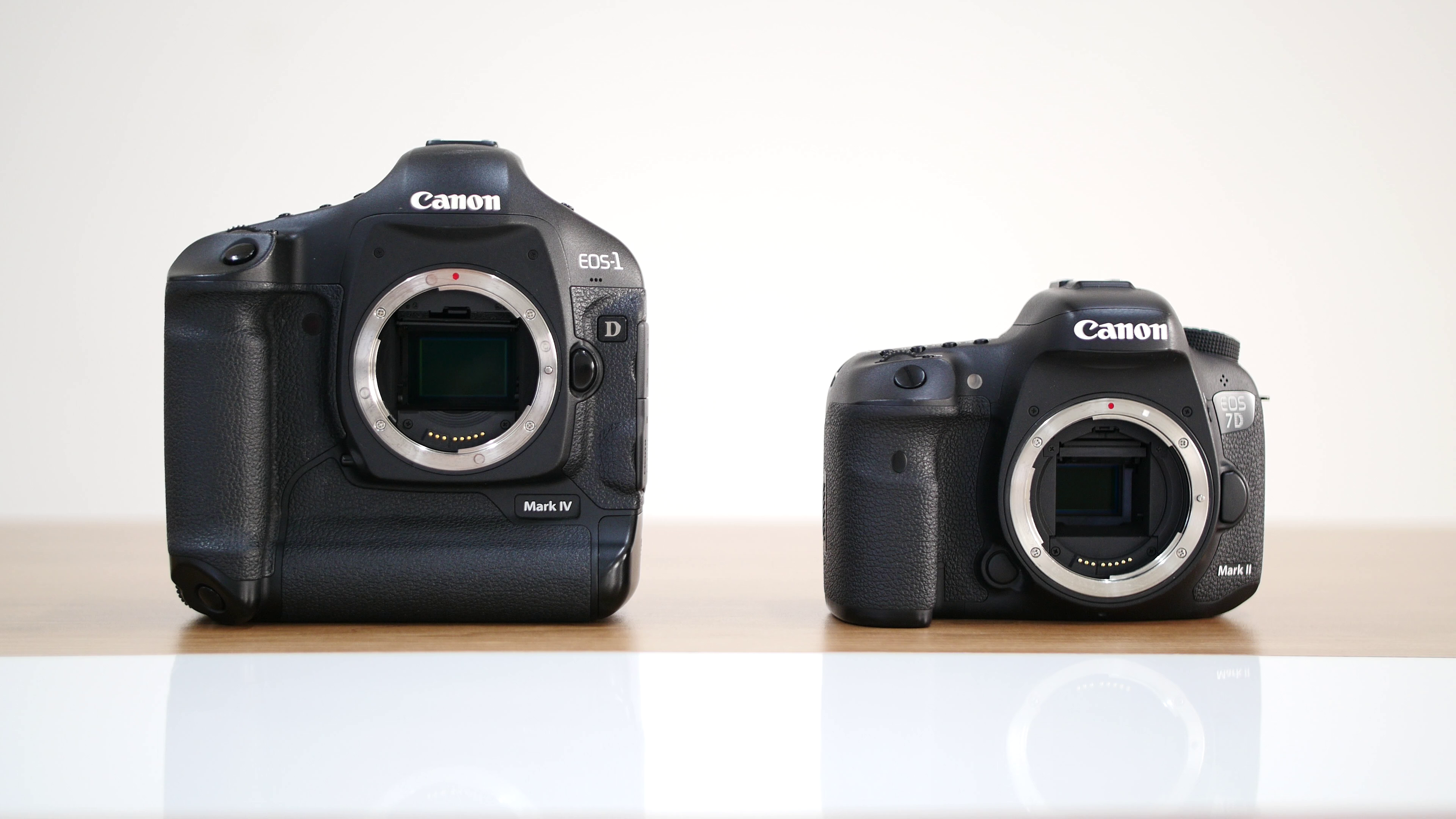 Canon DSLR | Grant Atkinson Page 1