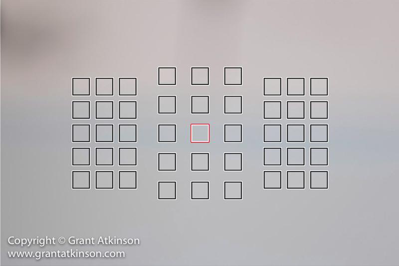 grant-atkinson