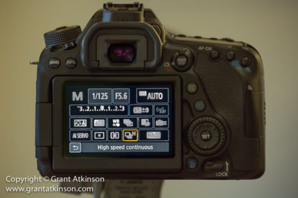 Canon 80D, Setup for Wildlife Photography