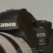 Canon 6D Mark II setup for wildlife photography