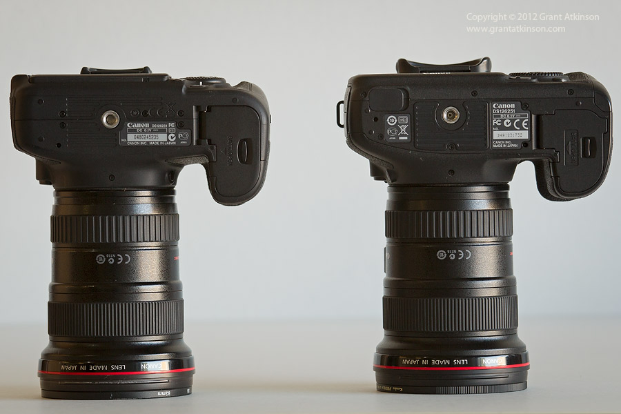 Canon EOS 60D Compared to the Canon EOS 7D